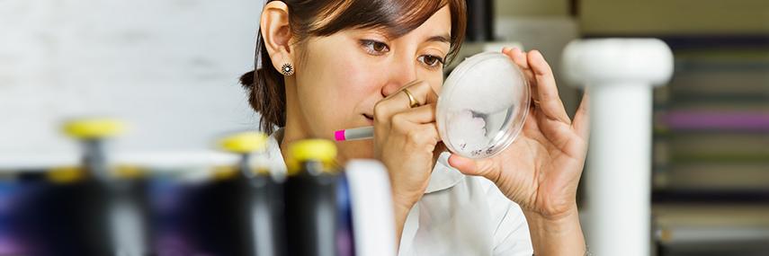 Caracterización fisiológica de hongos fitopatógenos
