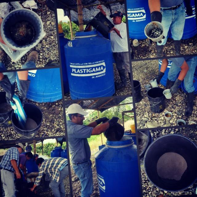 Personal del CIBE elabora junto al técnico de la Hacienda San Rafael, una solución madre para proceder a preparar bioles.