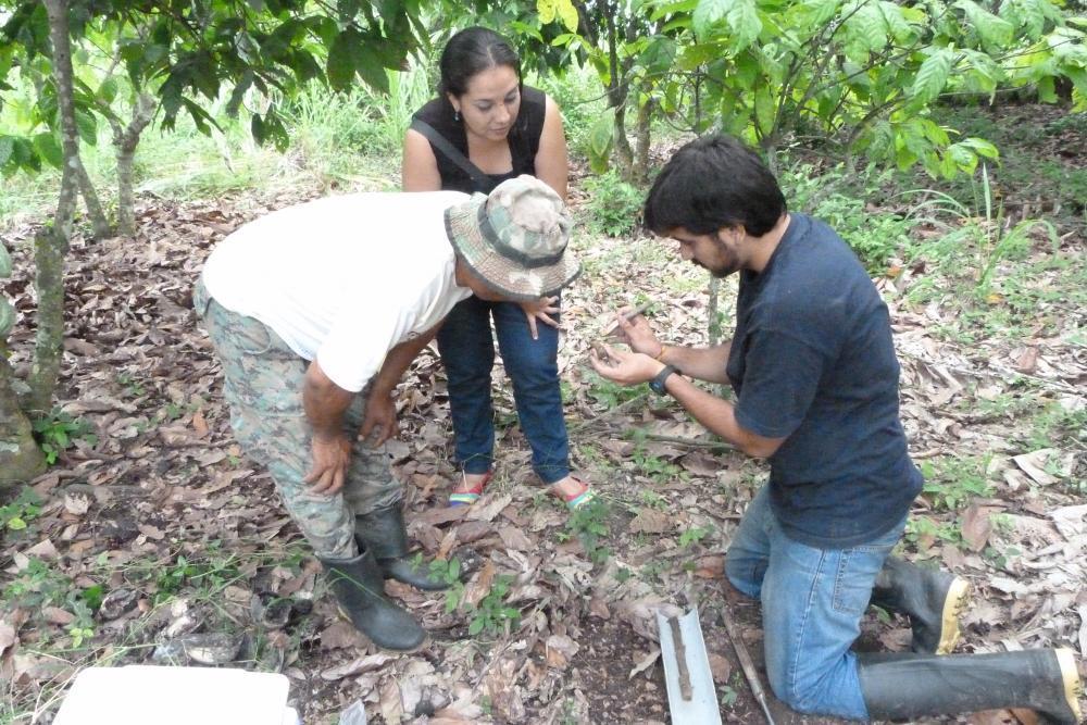 El Doctor Eduardo Chávez explica a los agricultores los pasos del protocolo de muestreo en suelos posiblemente afectados con cadmio y la importancia de este muestreo.